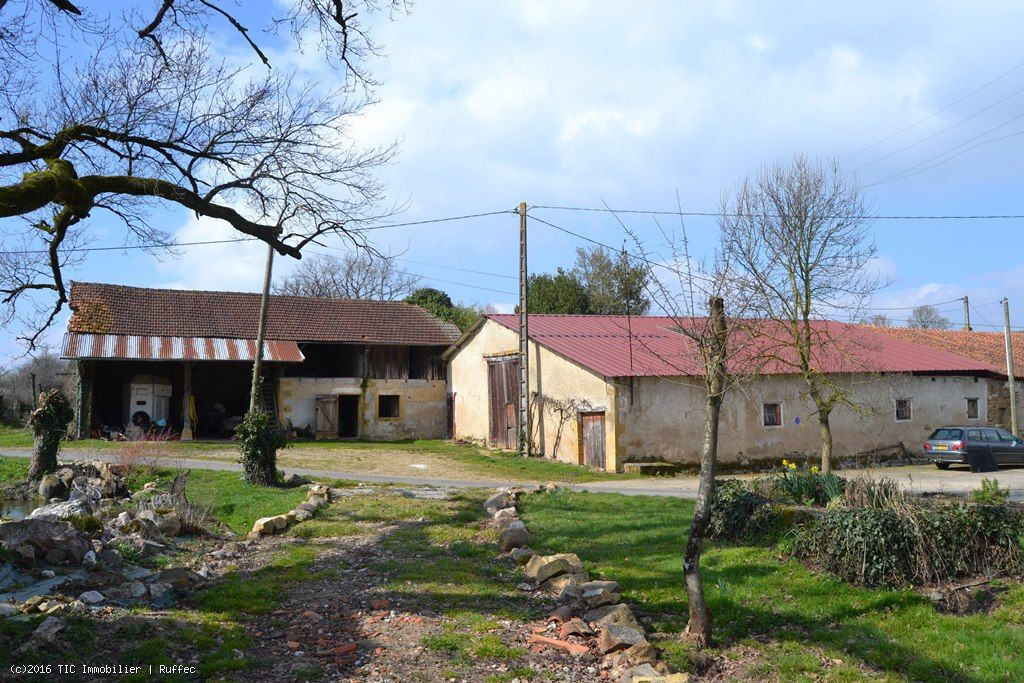 Small farm with 5 hectares of land