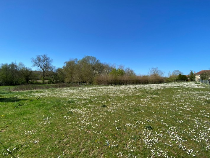 Building Plot On 2027m² - Between Verteuil And Aunac