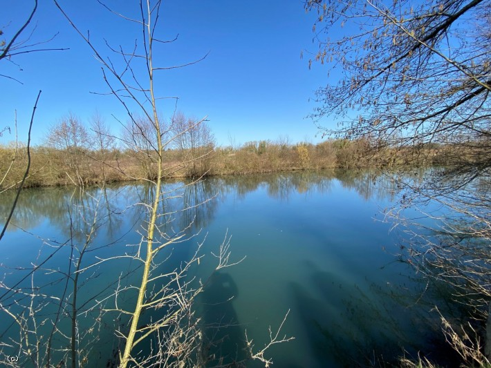 Leisure Plot With River Access - 2365m² - Near Verteuil sur Charente